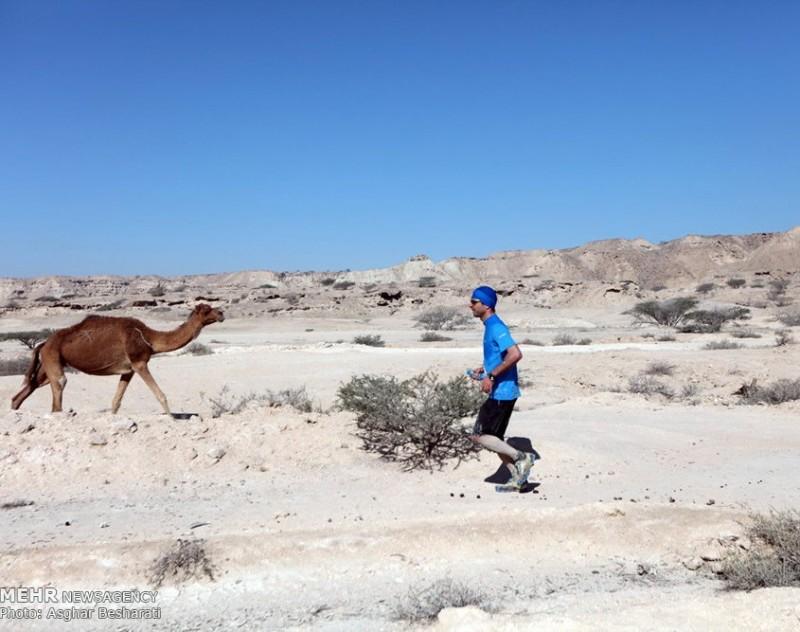 Международный марафон на острове Кешм, Персидский залив