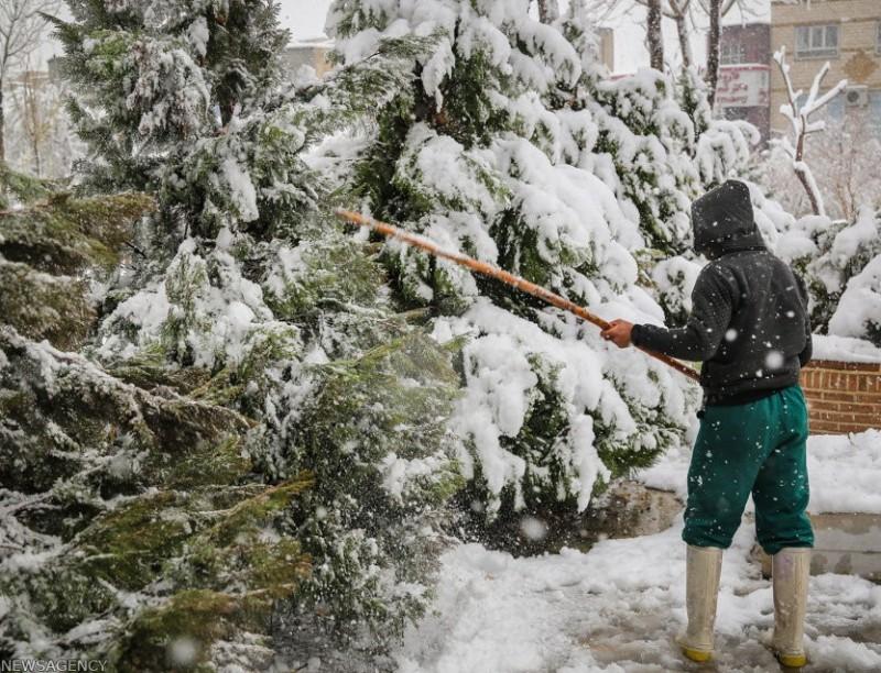 иран тегеран снег снегопад