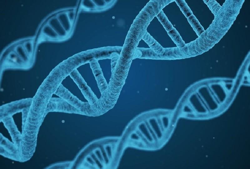 иран медицина генетика геном днк
