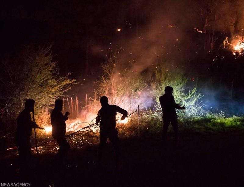 Лесной пожар в провинции Мазендеран, Иран