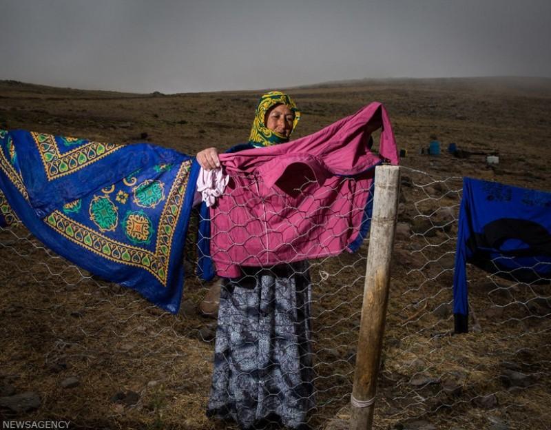 Иранские кочевники шахсевены